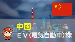 中国EVメーカータイトル